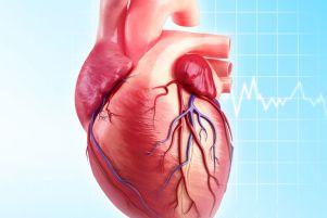 نارسایی قلب علت و درمان