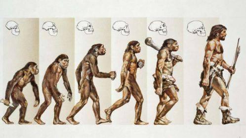 نظریه داروین و اصول آن