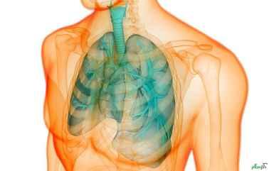 ۷ علامت که نشان میدهد ریه شما به خوبی کار نمیکند