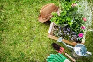 رشته باغبانی