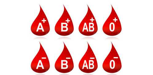 فال گروه خونی B