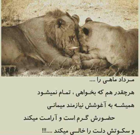 جملات زیبا برای مردادی ها