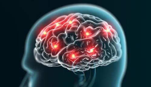 چگونه مغز خاطره می سازد؟