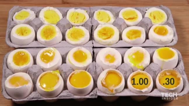 وقتی یک تخم مرغ را در آب جوش می پزیم درونش چه اتفاقاتی رخ می دهد؟
