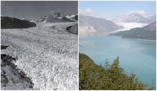 تغییرات دراماتیک سیاره ما به روایت عکس های ناسا