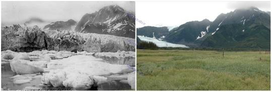 یخچال پدرسن، آلاسکا