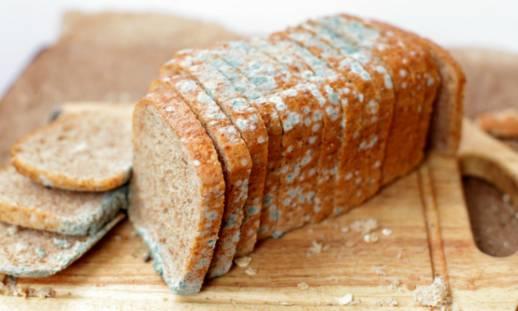 اگر نان کپک زده را بخوریم چه اتفاقی می افتد؟