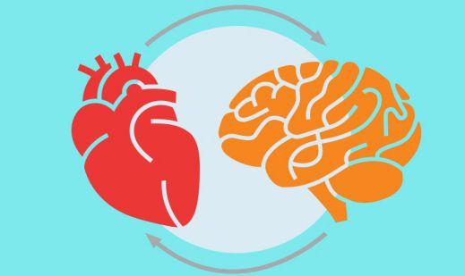 شما با عقل تان فکر میکنید یا با قلبتان؟